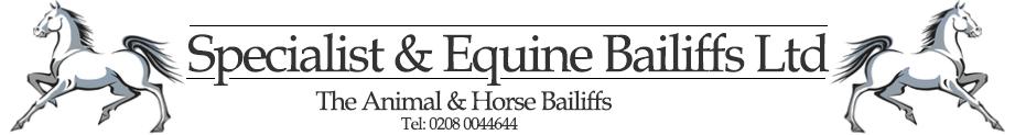 Horse Bailiffs